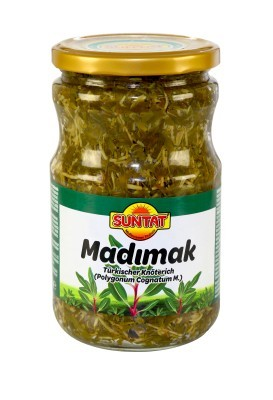 Türkischer Knöterich Madimak