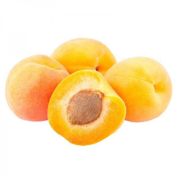 Täglich Frisch Aprikosen